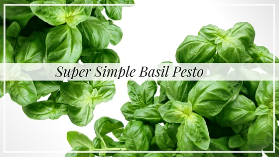 Super Simple Basil Pesto - Alyssa Coleman